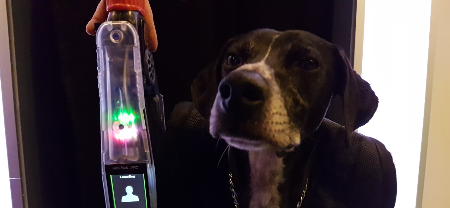 laserdog 2